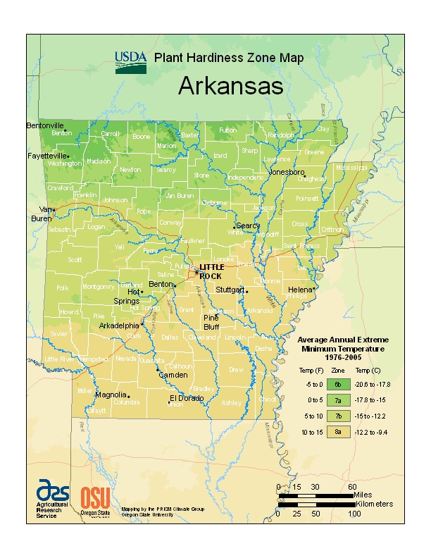 Arkansas (AR) USDA Zone Map