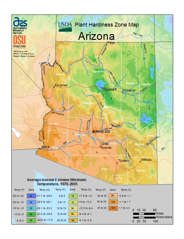 Arizona (AZ) USDA Zone Map