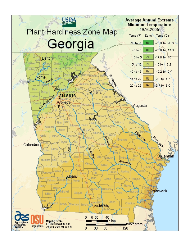 Georgia (GA) USDA Zone Map