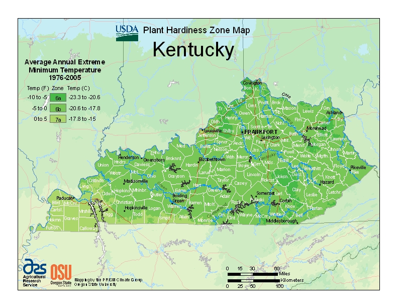 Kentucky (KY) USDA Zone Map