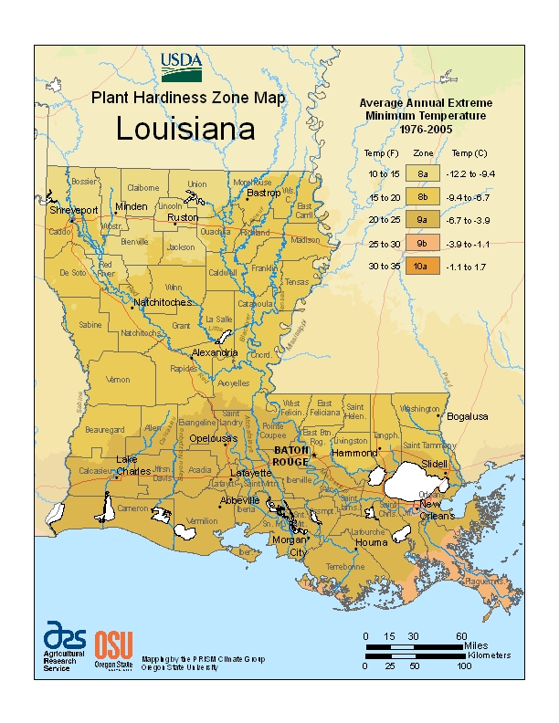 Louisiana (LA) USDA Zone Map