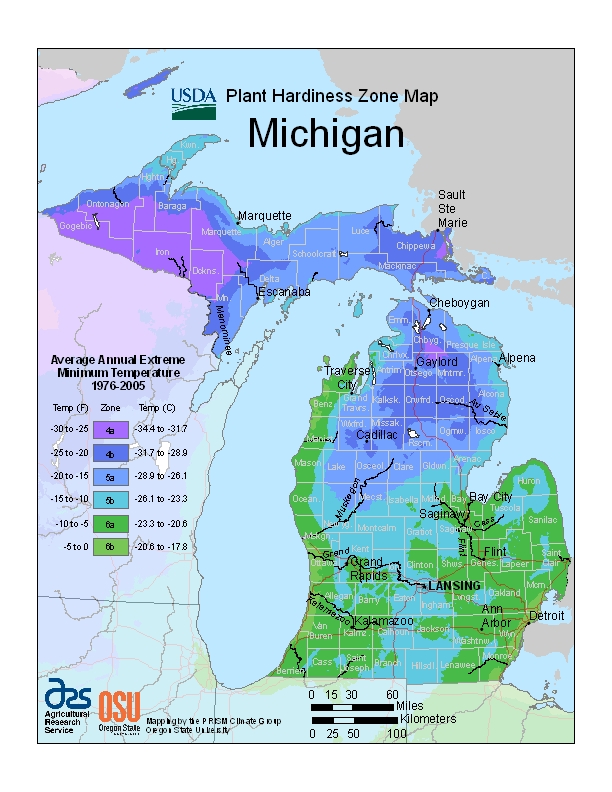 Michigan (MI) USDA Zone Map