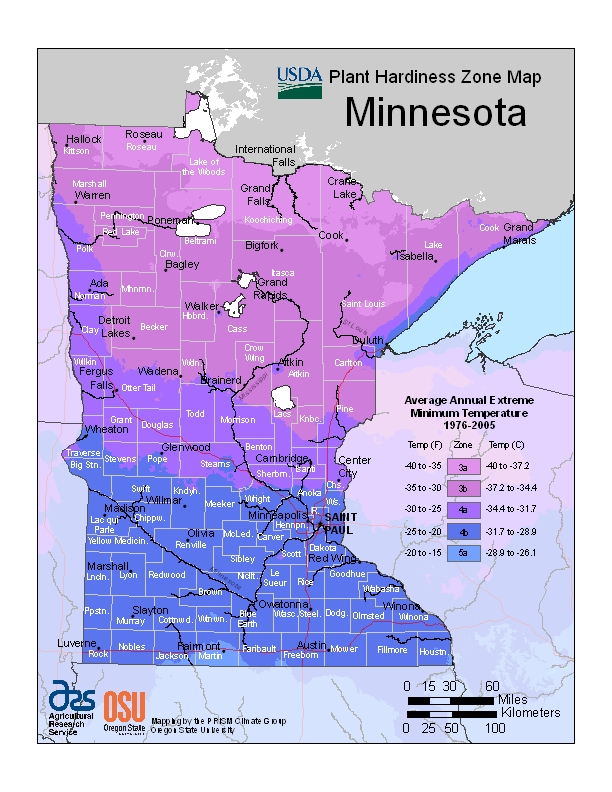 Minnesota (MN) USDA Zone Map