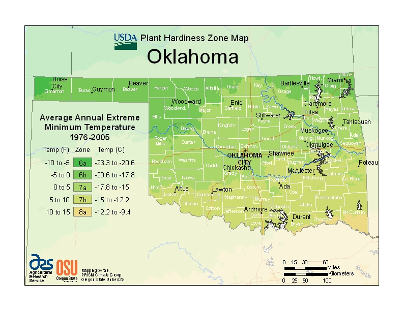 Oklahoma (OK) USDA Zone Map