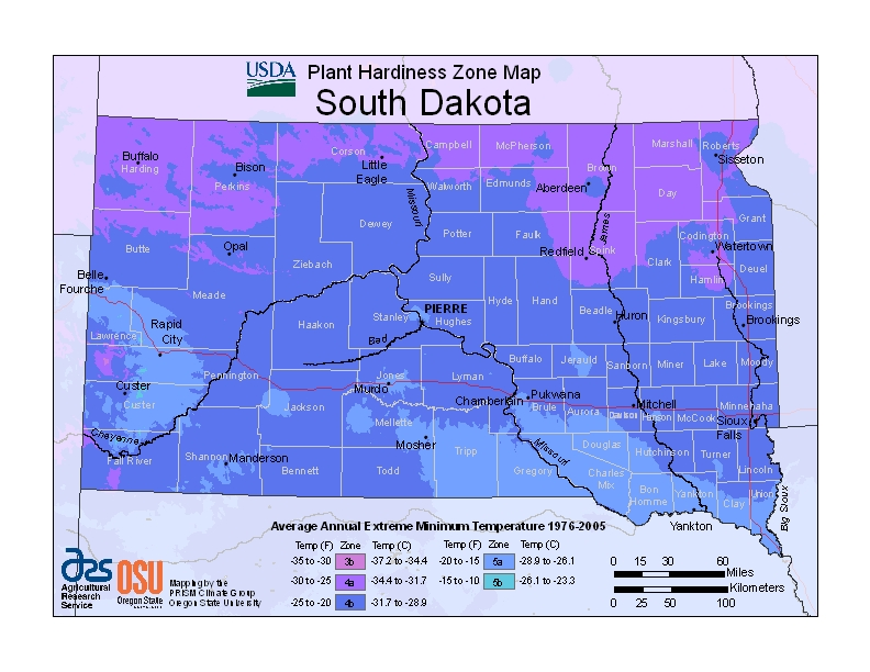 South Dakota (SD) USDA Zone Map