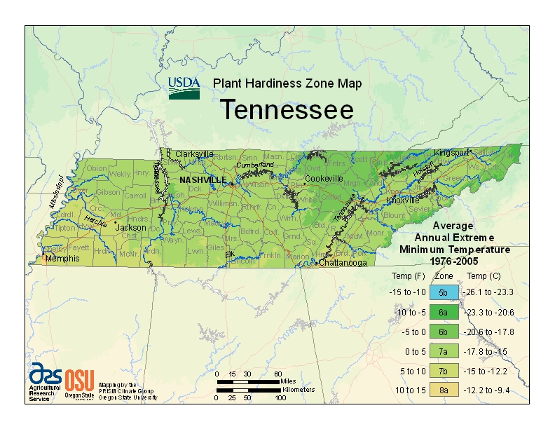 Tennessee (TN) USDA Zone Map